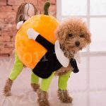 New Arrival Lovely Pet Dog Clothes Pet mobile pumpkin clothes Hoodie  Pumpkin Sweater Clothing For Dogs