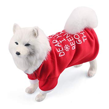 Christmas Pet Clothes and Accessories