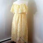 ASTR lace dress NWT New feminine and flirty ASTR the label peekaboo lace dress f...