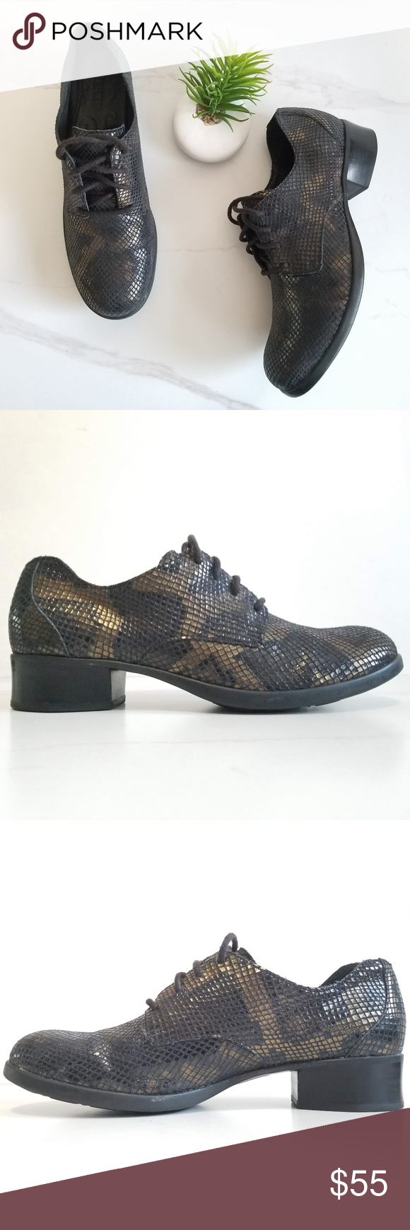 Born Lace Up Oxfords Black Heel Bronze Snake Print Born Oxfords Shimmery Snakesk…