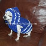 Colorado Strong Dog Hoodie - Small Dog Hoody Crochet pattern