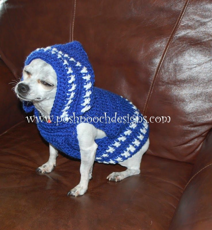 Colorado Strong Dog Hoodie – Small Dog Hoody Crochet pattern