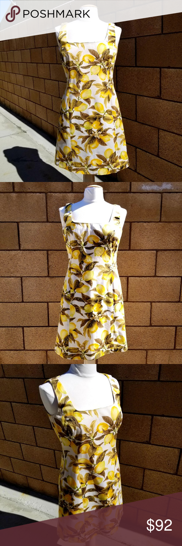 Company Ellen Tracy Lemon Fruit SpringSummer Dress Besides a missing belt and th…