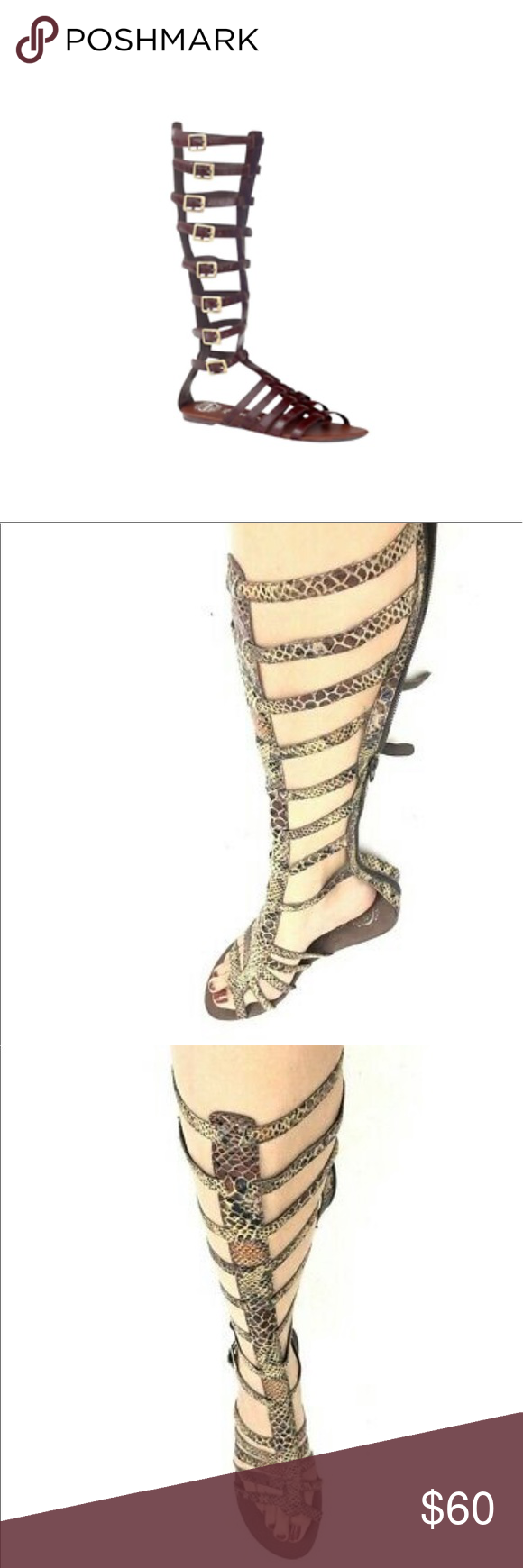 Jeffrey Campbell Tip 2 Knee High Gladiator Sandals EUC. Toes show light wear. Sn…