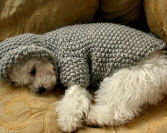 Kleine hond trui / haak hond kleding / Pet kleding / Winter hond Hoodie / warme hond kleding – Outfits van de hond / pup trui / BubaDog
