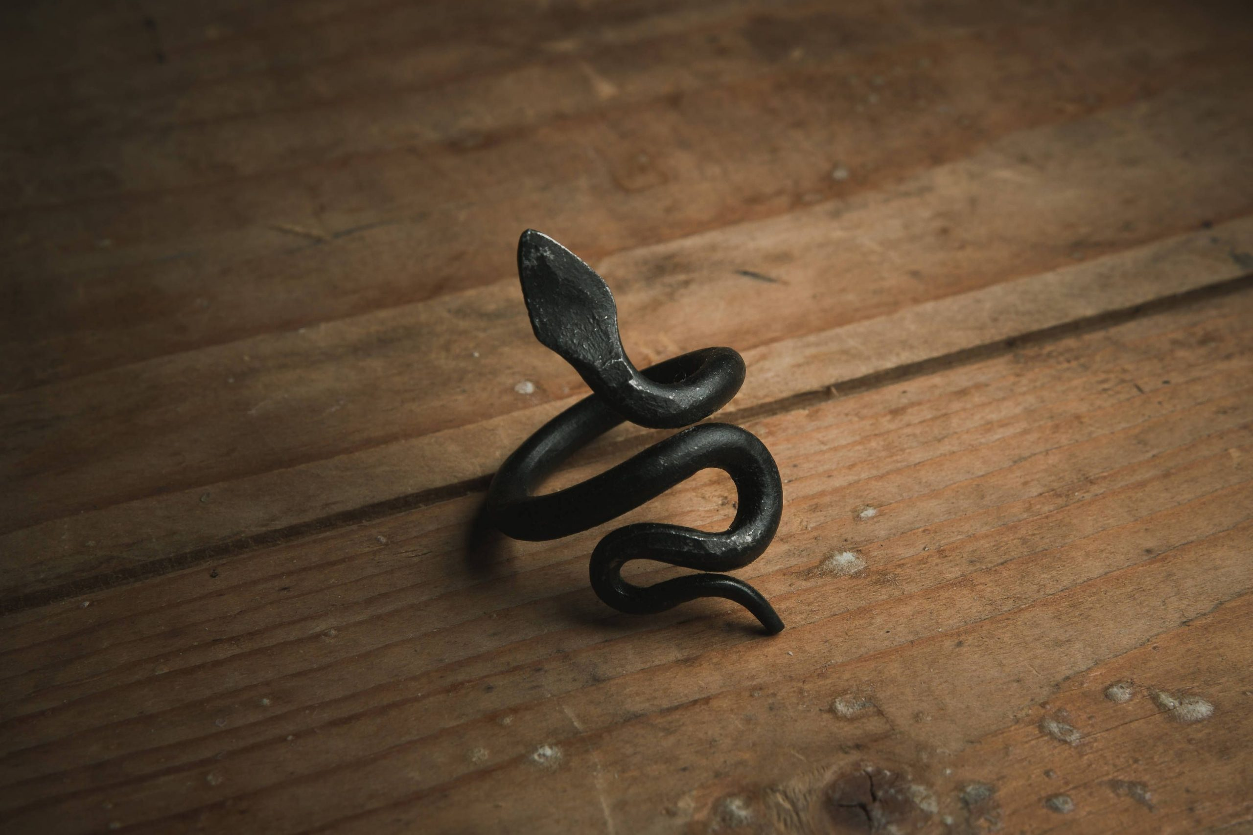 Snake ring, goth jewelry, serpent ring, iron ring, gothic jewelry, viking ring, …