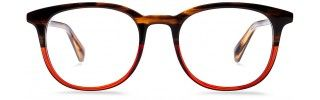 Warby Parker Glasses | | Winter Collection | Durand | Saddle Russest